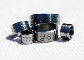 Rings in x8CrNiS18-9 Steel